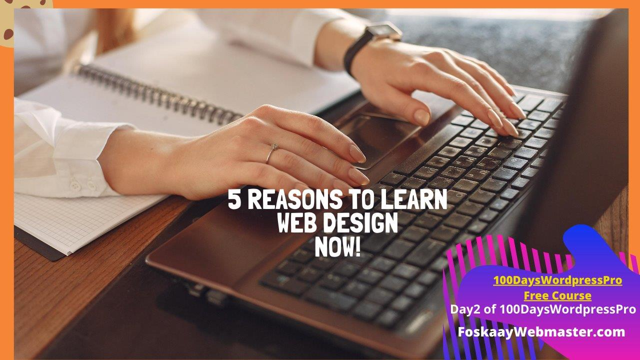5 Reasons To Learn Web Design In 2020/2021